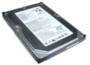 Seagate ST3402111AS 9BD11A-197 40GB FW 3.AAE SATA Hard Drive 8,9cm (3.5 inch)